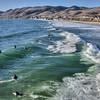 pismo surfers 5171