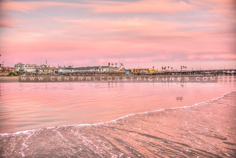 pismo pink town-4435-