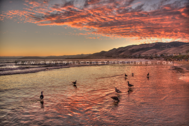 pismo beach sunset 3769