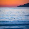 surfer sunset 8654