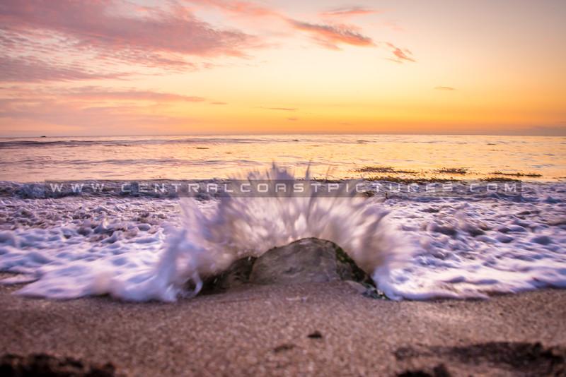 shell beach splash-1612