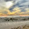 pismo-beach_horses-9653