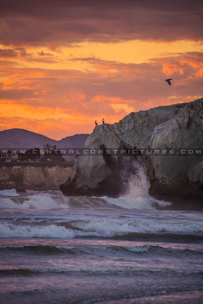 pismo cave wave-3827