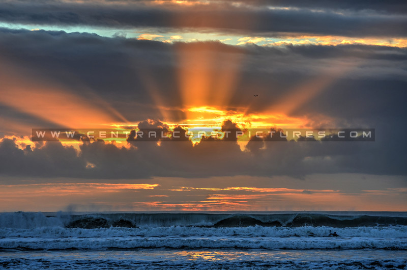 Sunrays-Pismo_1772