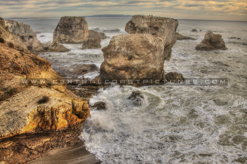 shell beach tides waves 9540