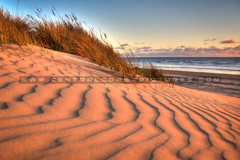 pismo dunes 6020-