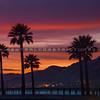 pismo pink sunset-5451