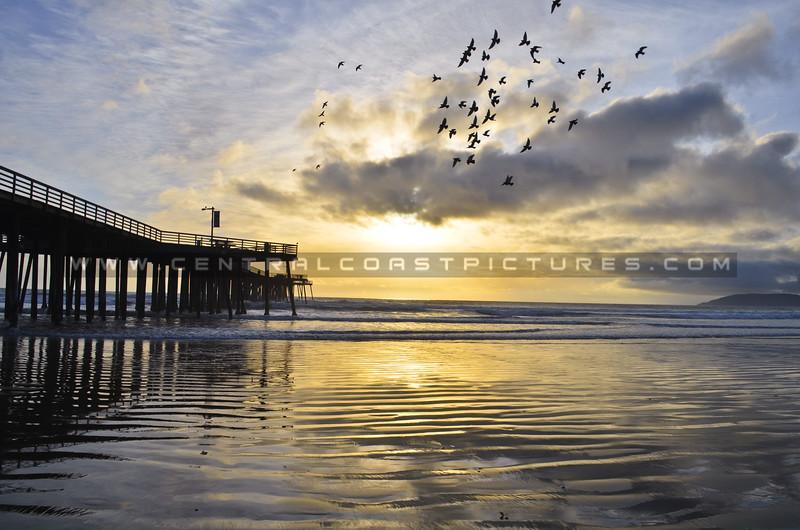 pismo-beach-pier-2829