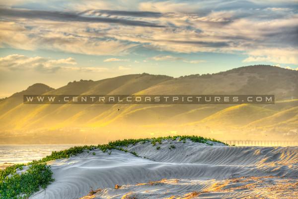 grover dunes yellow hills-9474-