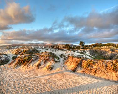 grover-beach-dunes_6511