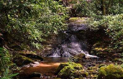 Bear Run Creek