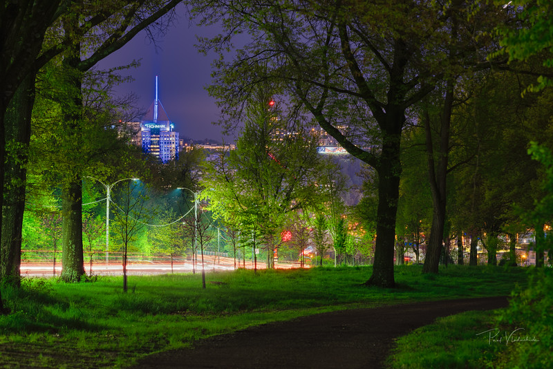 Spring Night in the Park