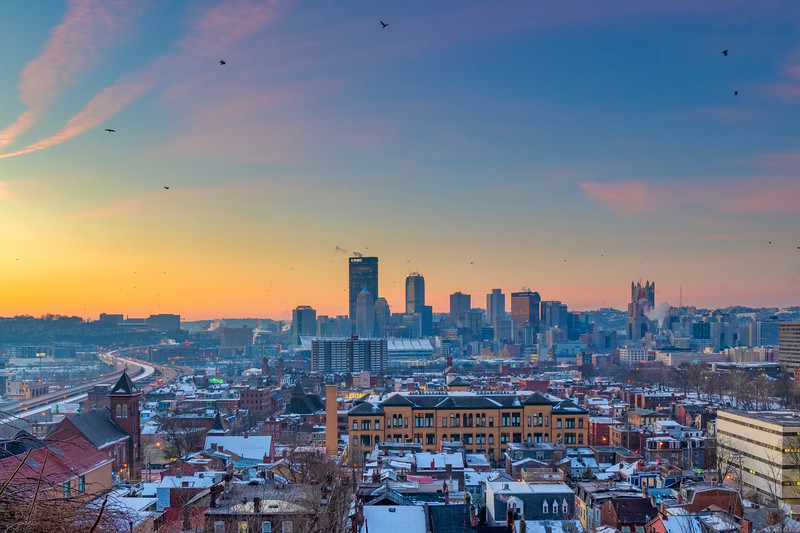 Winter Sunrise with Birds in Flight - Pittsburgh Pennsylvania
