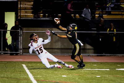 North Allegheny Football Picture Highlights 2015-33