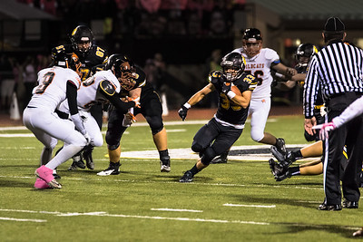 North Allegheny Football Picture Highlights 2015-25