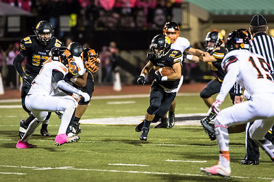 North Allegheny Football Picture Highlights 2015-26