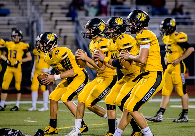 North Allegheny Football vs Butler 2015-5