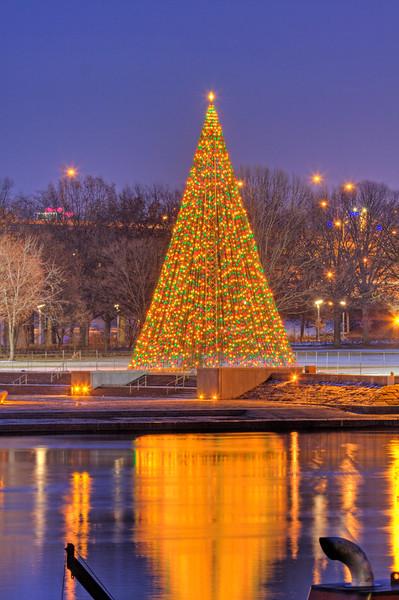Pitt 032c - The Point Christmas Tree