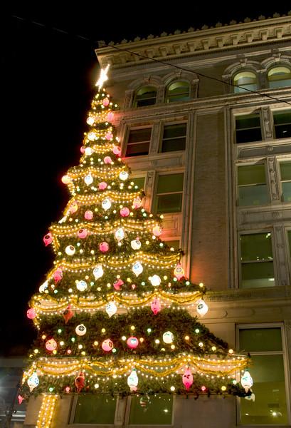 Christmas Tree on Building