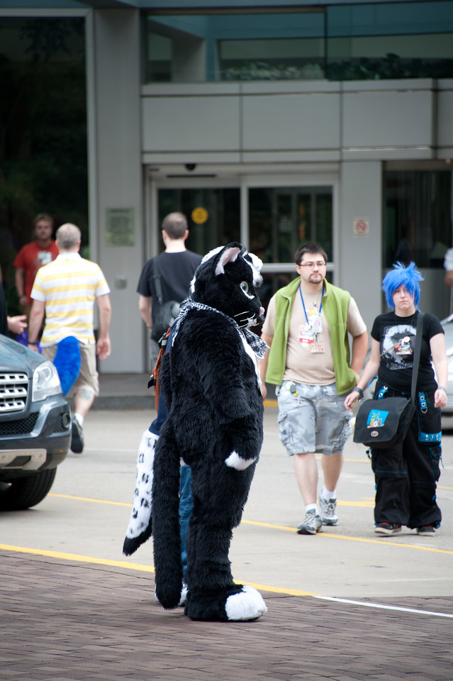 Furry - Anthrocon 2011
