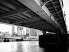 Under the Robert Clemente Bridge.