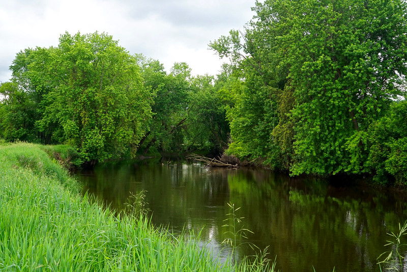 Gentle Otter Creek
