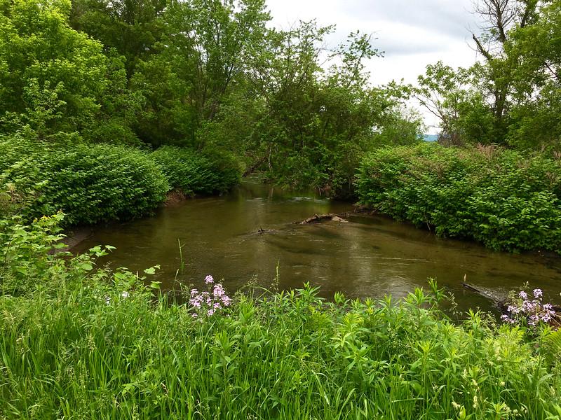 Furnace Brook