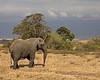 Tanzania-0492