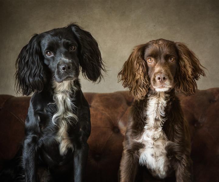 Hamish & Rory
