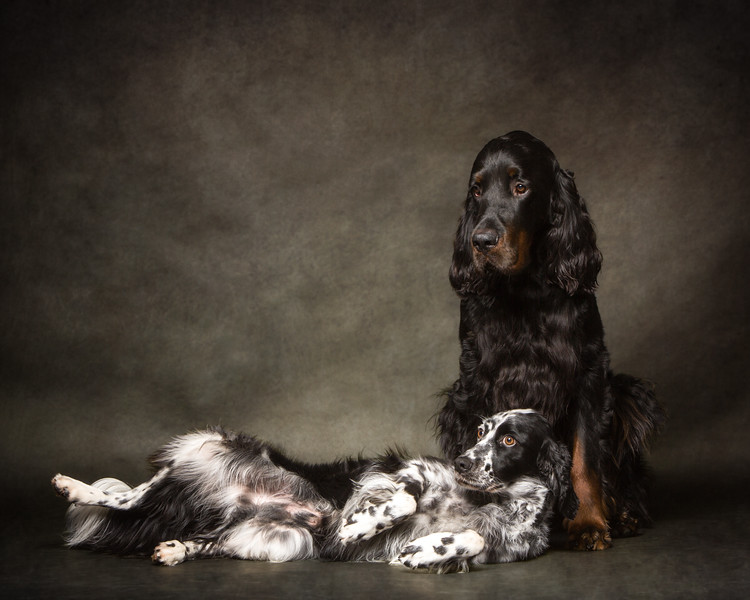 Ollie & Dubhgall
