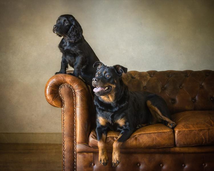 Mac and Roxy