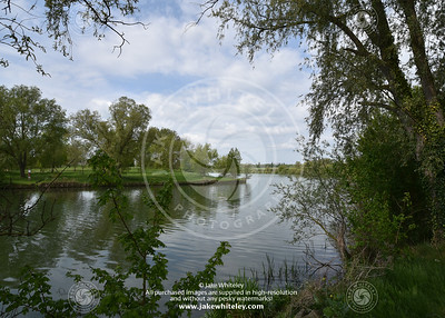 2019_NeneValley_May19_02