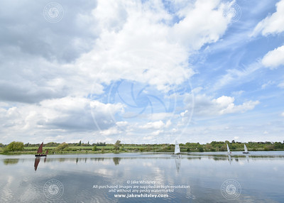 2019_NeneValley_May19_14