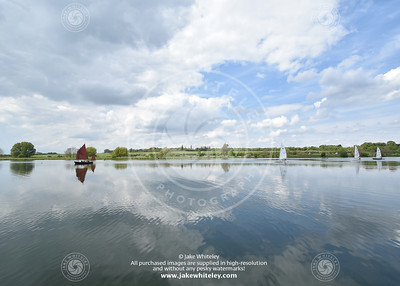 2019_NeneValley_May19_15