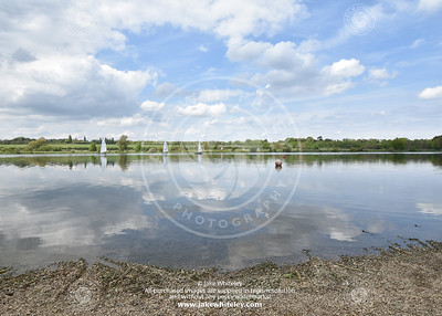 2019_NeneValley_May19_16