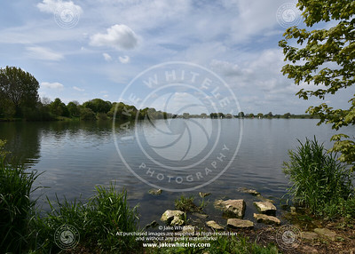 2019_NeneValley_May19_03