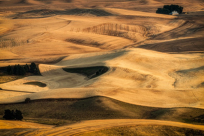 Southeastern Washington, USA. The rolling hills and patterns of the Palouse region at harvest time.