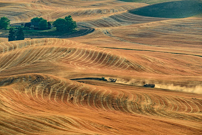 Palouse Fields at harvest time with combine as seen from Steptoe Butte, Steptoe Butte State Park, Washington, USA.
