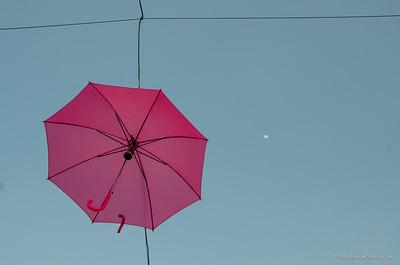 201405_08_DSC5067_by_Etienne-Girardet-BARPACIFICO