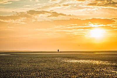 Orleans, MA.  Rock Harbor.  A woman runs with her dog on the sand flats at low tide at sundown.