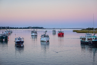 Chatham, MA.  Trawlers  anchored at Chatham Fish Pier in late afternoon.
