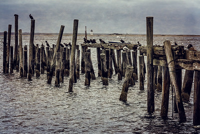 Cape Cod, Mass., USA.  Old, wooden pier with waterfowl lighthouse, and ocean.