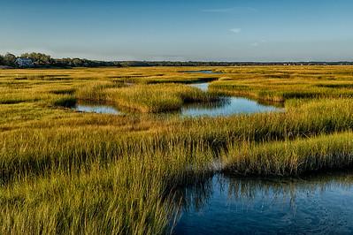 Yarmouth Port, Mass., USA.  Marsh grass at Grey's Beach in autumn.