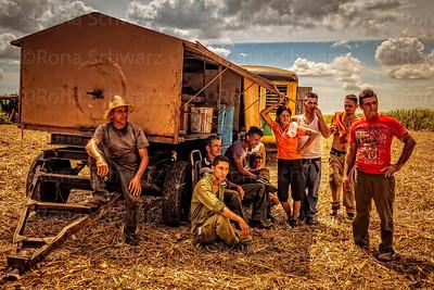 Cuba, near Cienfuegos.  Farm workers taking a break from the sugar cane harvest.