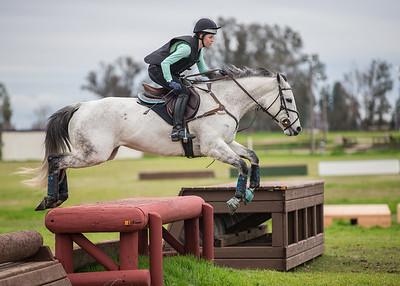 2016 1/30-1/31 Fresno Horse Park XC Schooling & Dressage