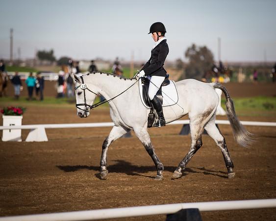 2016 Feb 19-21 Fresno Horse Trials
