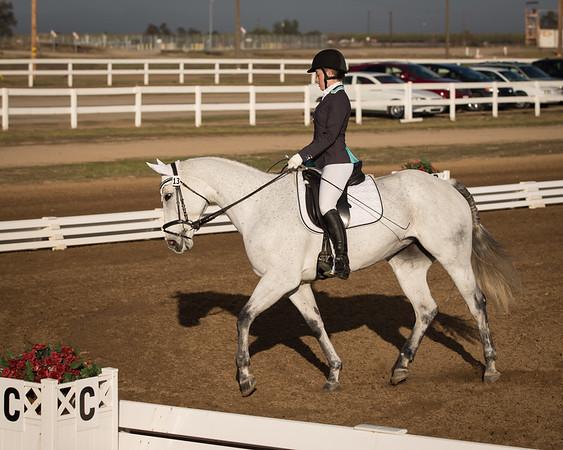 2016 Nov. 18-20th Horse Trials