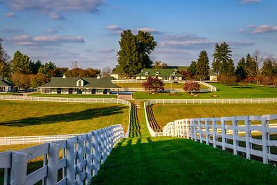 USA, Lexington, Kentucky, Darby Dan Farm
