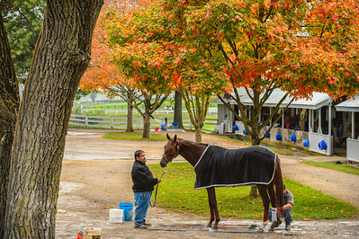 USA, Lexington, Kentucky. Horse attendants at Keeneland Thoroughbred Racecourse.