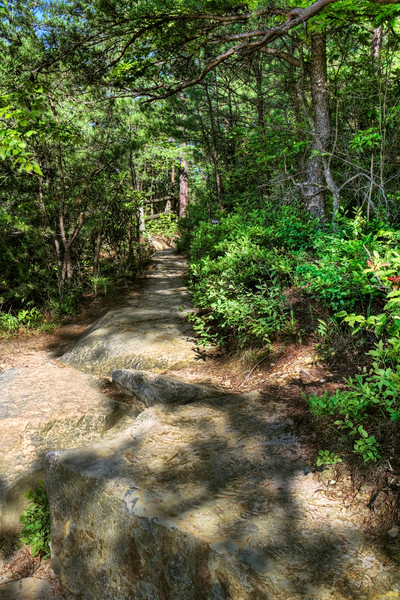 """Path from Battleship Rock""<br /> Natural Bridge State Park, Kentucky"